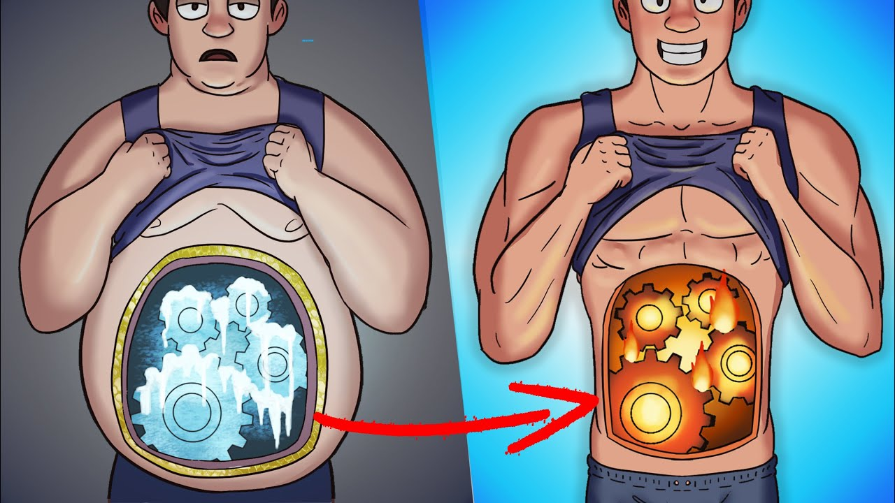 What Happens Inside Your Body When You Burn Fat