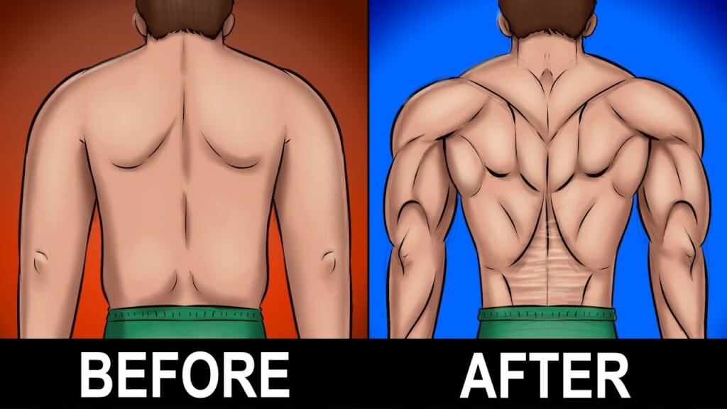 7 BEST Exercises for a Stronger Lower Back