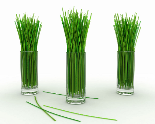Lose Weight With Lemongrass