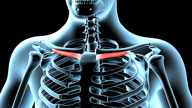 Fix This Tiny Muscle to Relieve Neck Pain 1