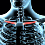 Tip: Fix This Tiny Muscle to Relieve Neck Pain