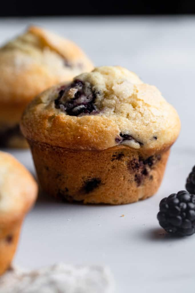 one Blackberry Muffin on a table