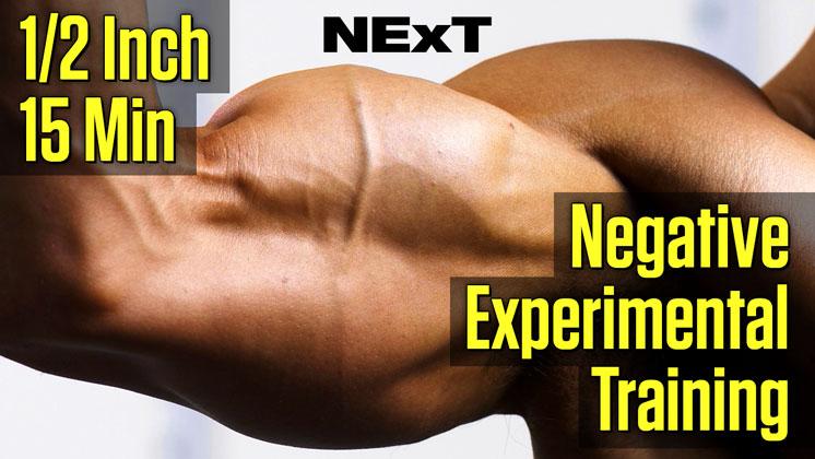 NExt Arms 1