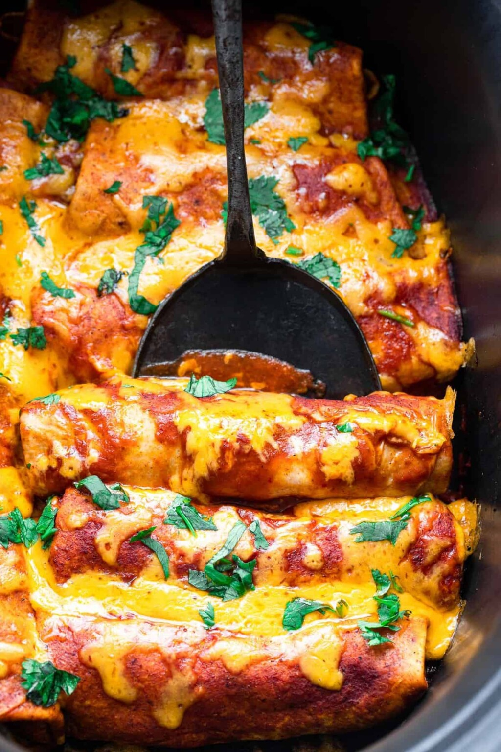 crock pot chicken enchiladas photo